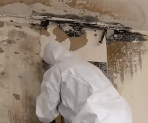 Man repairing the wall